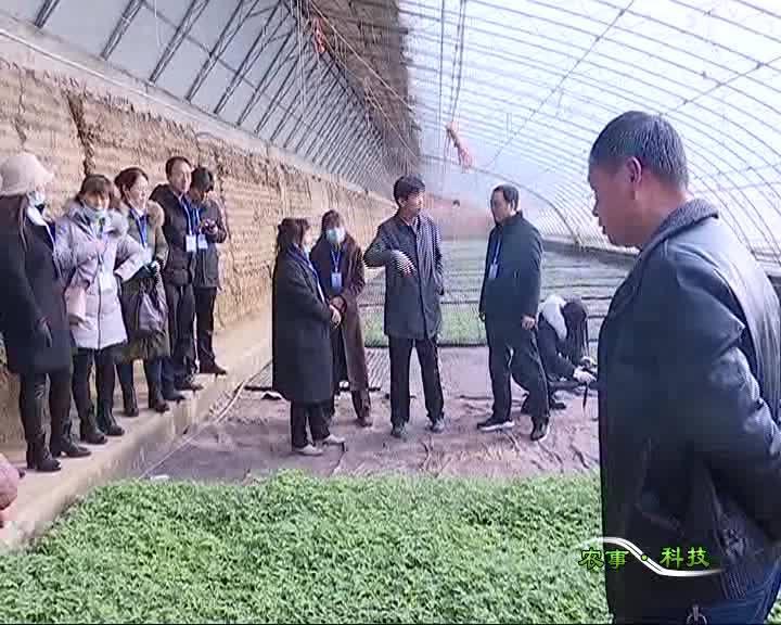 农事科技20201226