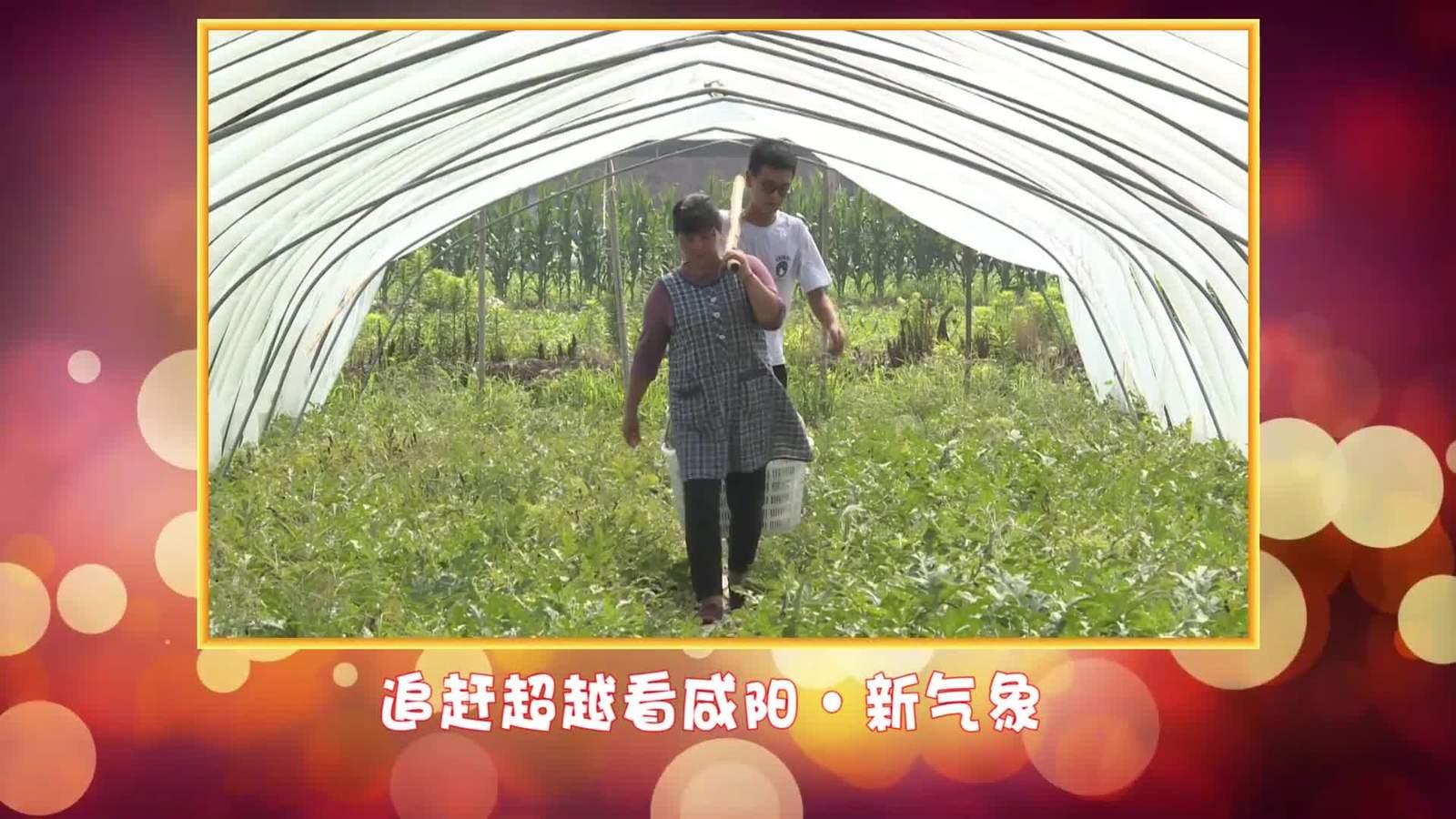 """""""追赶超越看咸阳""""全媒体行动《三原:打""""特色牌"""" 走小康路》"""