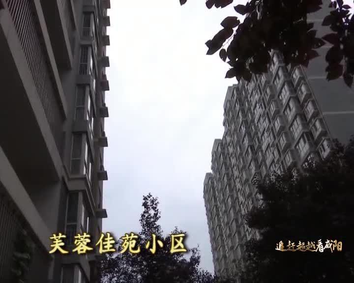 关注咸阳20200731