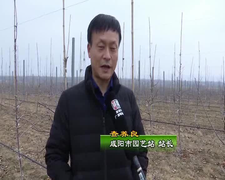 农事科技20210313