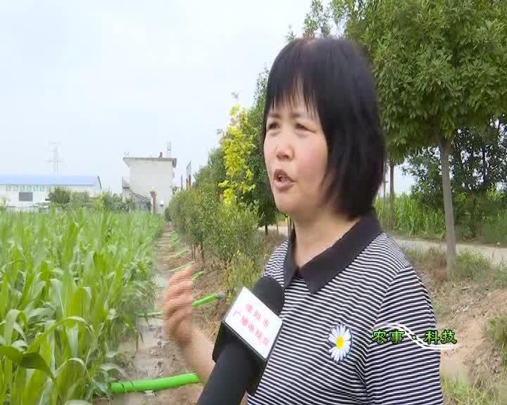 農事科技20210807